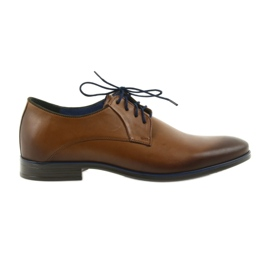 Men's brown slippers Nikopol 1644