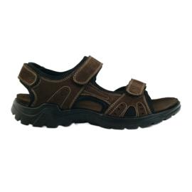 American Club American leather men's sandals brown