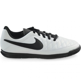 Indoor shoes Nike Majestry Ic M AQ7898-107 white white