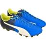 Football shoes Puma evoSPEED 4.5 Fg M 10359204 blue blue