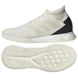 Indoor shoes adidas Predator 19.1 Tr M D98056 white multicolored