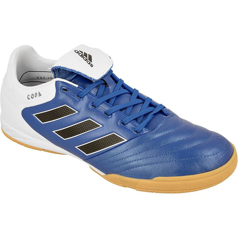 Adidas Copa 17.3 In M BB0853 indoor shoes