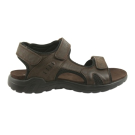 American Club American leather sports sandals CY11 brown