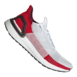 Running shoes adidas UltraBoost 19 M EF1341