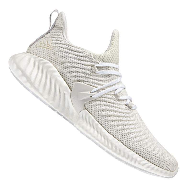 Running shoes adidas Alphabounce Instinct M BD7111 white