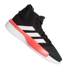 Basketball shoes adidas Pro Adversary 2019 M BB9192