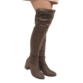 Brown Taupe boots on warm post 1704-8