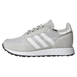 Grey Adidas Originals Forest Grove Jr EE6565 shoes