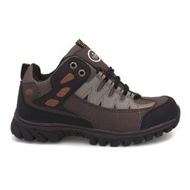 Men's Trekking Shoes M317 Brown