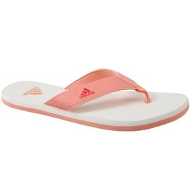 Orange Flip-flops adidas Beach Thong 2 Jr CP9379