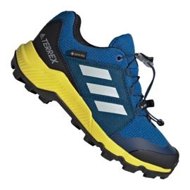Adidas Terrex Gtx Jr BC0599 shoes blue