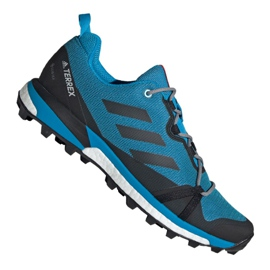 Adidas Terrex Skychaser Lt Gtx M F36107 shoes
