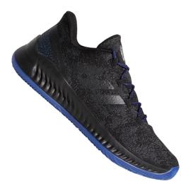 Adidas Harden B / EXM F97250 shoes black black