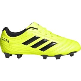 Adidas Copa 19.4 Fg Jr F35461 football shoes