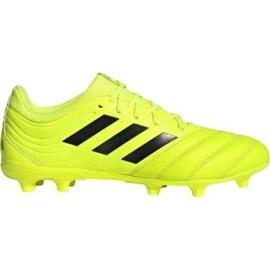 Adidas Copa 19.3 Fg M F35495 football shoes
