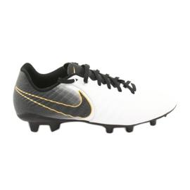 Football shoes Nike Tiempo Legend 7 Academy Fg M AO2596-100