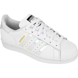 Adidas Originals Superstar Jr AQ6278 shoes white