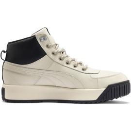 Puma Tarrenz Sb Puretex M 370552 03 shoes brown