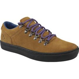 Timberland Adv 2.0 Cupsole Alpine Ox M A1SHV shoes brown