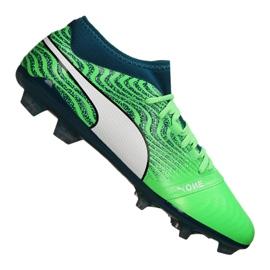 Puma One 18.2 Fg M 104533-04 football boots green green
