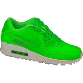 Nike Air Max 90 Ltr Gs W 724821-300 shoes green