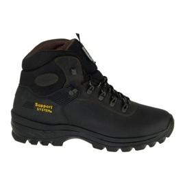 Grisport shoes M 10242D26G brown
