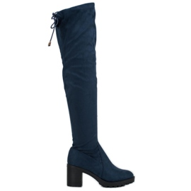 Small Swan Suede Thighs On A Bar blue