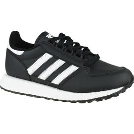 Adidas Forest Grove Cf Jr EG8958 shoes black