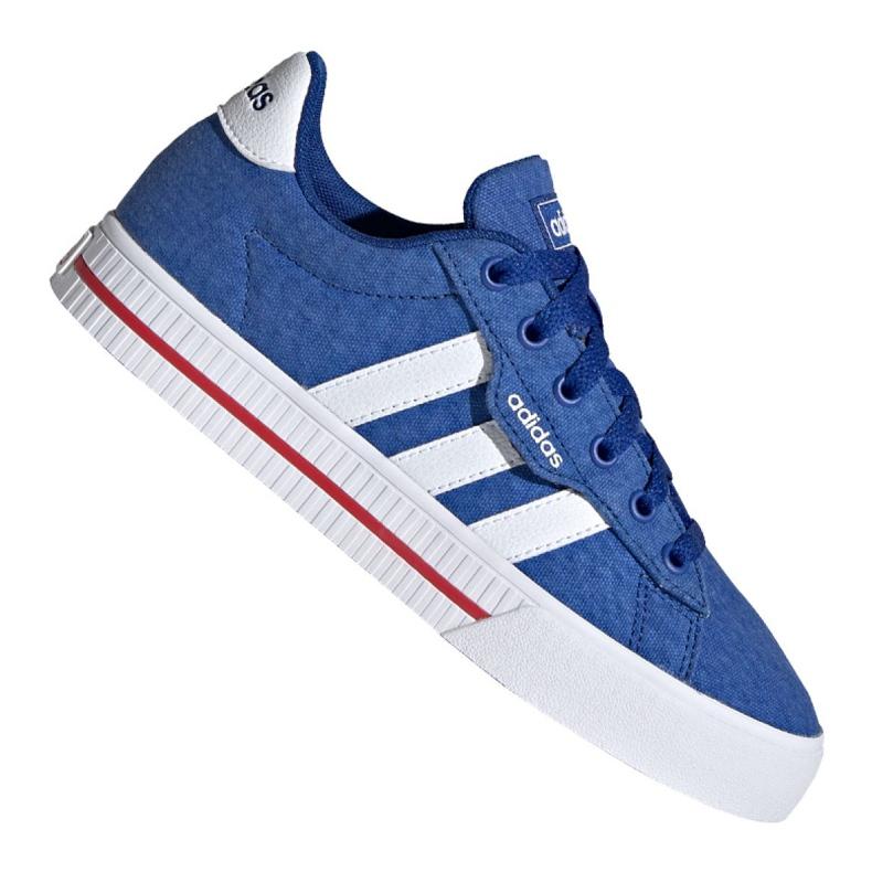 Adidas Daily 3.0 Jr FX7267 shoes blue grey