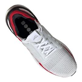 Running shoes adidas UltraBoost 19 M EF1341 1