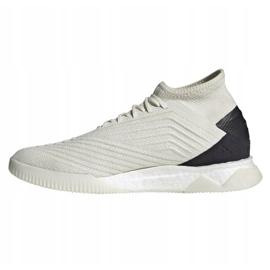 Indoor shoes adidas Predator 19.1 Tr M D98056 white multicolored 1