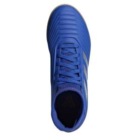 Indoor shoes adidas Predator 19.3 In Jr CM8543 blue multicolored 1