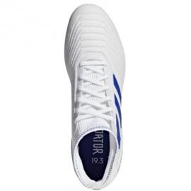 Football boots adidas Predator 19.3 Ag M D97943 white white 1
