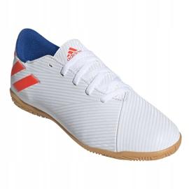 Indoor shoes adidas Nemeziz Messi 19.4 In Jr F99928 white multicolored 3