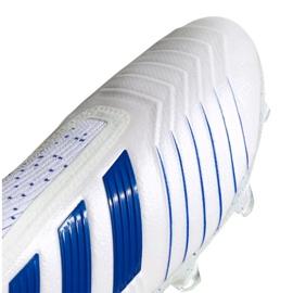 Football boots adidas Predator 19+ Fg M BC0548 white white 7