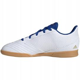 Adidas Predator 19.4 In Sala Jr EG2829 indoor shoes white white 2