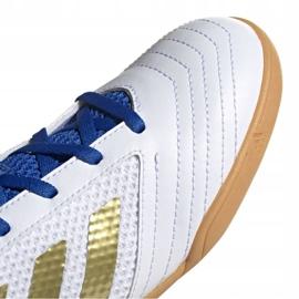 Adidas Predator 19.4 In Sala Jr EG2829 indoor shoes white white 3