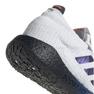 Adidas PulseBoost Hd M EG0978 shoes grey 1