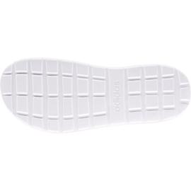 Flip-flops adidas Comfort Flip Flop W FY8656 white black 1